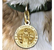 Saint Francis of Assisi    Protect My Dog  Pet Tag