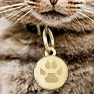 Cat s Paw Print Round  Picture Locket