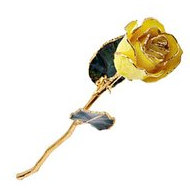 Lacquered Yellow Rose