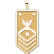 Unites States Navy Fleet   Command Master Chief Petty Officer Pendant