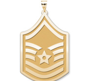 U S AirForce National Guard  Master Sergeant Pendant