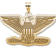 U S AirForce National Guard Colonel Pendant