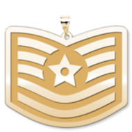 U S AirForce National Guard Technical Sergeant Pendant