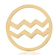 Nikki Lissoni Gold tone 1 1 4 Inch Aquarius Coin