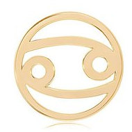 Nikki Lissoni Gold tone 1 1 4 Inch Cancer Coin