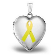14K White Gold  Childhood Cancer Awareness  Heart Locket