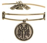 Wind   Fire  Lobster  Expandable Bracelet