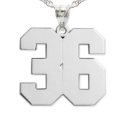 NEW  High Polished Jersey Number Pendant with 2 Digits