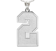 Jersey Single Number Charm or Pendant