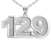 Number Charm or  Pendant with 3 Digits