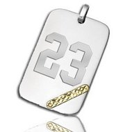 Stainless Steel Rectangular w  14K Gold Swiss Cut  Dog Tag Pendant