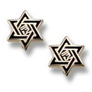 14K Yellow Gold Children s  Star of David  Enamel Earrings