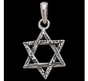 Sterling Silver Teen Textured Star Of David Pendant