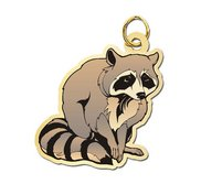 Raccoon Charm