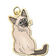 Cat   Siamese Charm