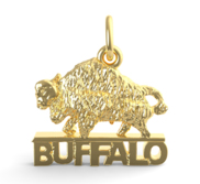 NEW YORK BUFFALO