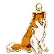 Dog - Collie Charm