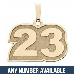 Number Charm or  Pendant with 2 Digits