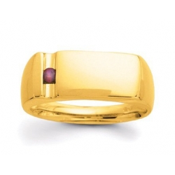 Gold 1 Stone Father s Ring