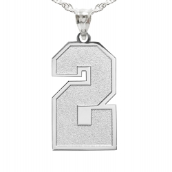 New  Jersey Single Number Charm or Pendant