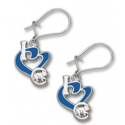 Chicago Cubs 1 2 Inch Earrings