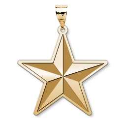 US Army National Guard Brigadier General Pendant