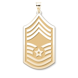U S AirForce National Guard Chief Master Sergeant Pendant