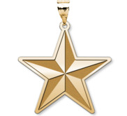 U S AirForce National Guard Brigadier General Pendant