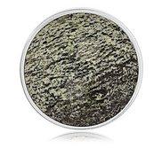 Nikki Lissoni Silver tone 1 1 4 Inch Faceted Green Zebra Jasper Coin