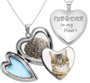 Furever in my Heart Cremation   Hair Photo Locket