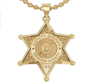 Personalized Michigan Sheriff Badge with Rank  Number   Dept