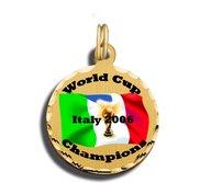3 4  World Cup Charm