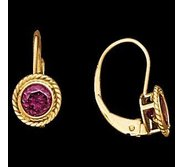 14K Yellow Gold Teen LeverBack Rope Bezel Earring