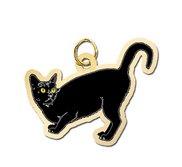 Cat   Black Charm