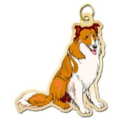 Dog   Collie Charm