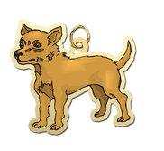 Dog   Chihuahua Charm