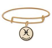 Pisces Symbol Expandable Bracelet