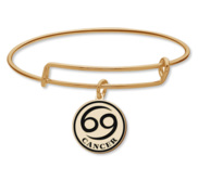 Cancer Symbol Expandable Bracelet